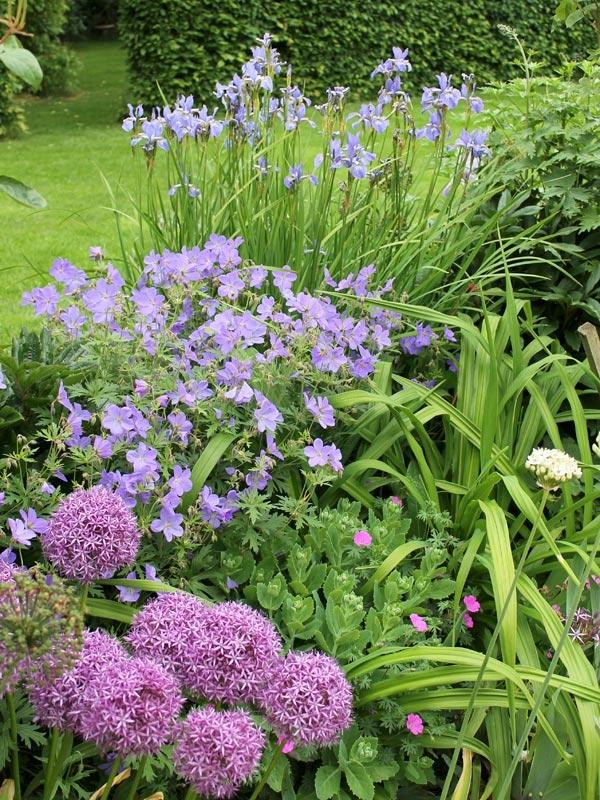 Kate Smart Garden Design